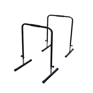 Gym Parallel Bars